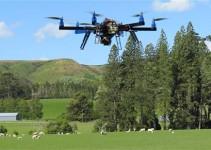 Salvaguardia dell'ecosistema con i droni