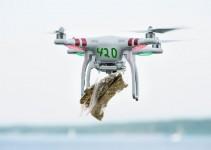 drone marijuana