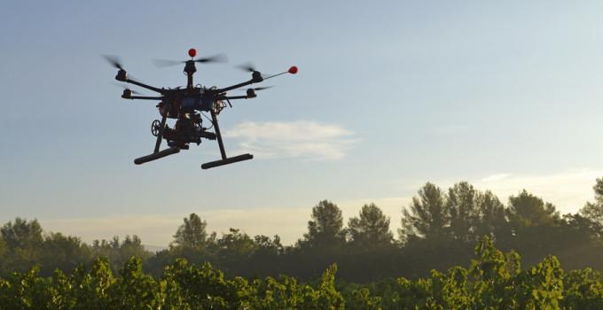 Drone Viticoltura Di Precisione